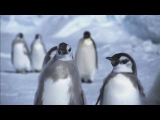 Королевство Океанов / Kingdom of the Oceans 4 Между Сушей и Морем (2011) HD