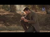 Земля волков / Tierra de Lobos 2012 Сезон 3 Серия 10